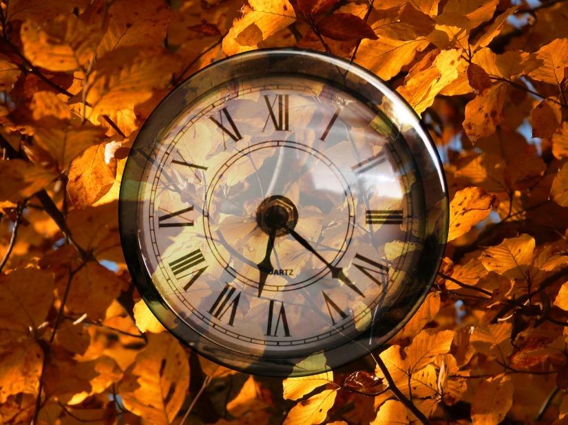 Die neuen Uhren-Trends für denHerbst
